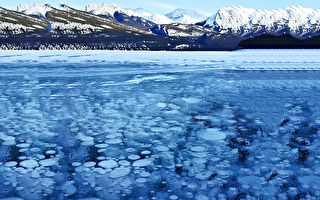 冬季奇观:落基山冰封气泡美景