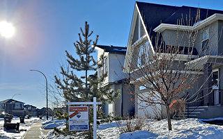 卡城12月房屋销售激增40%
