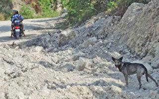狗狗狂吠引关注 菲律宾男成功救起一名弃婴