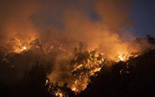 聖安娜風促千橡市爆野火 疏散居民已返家