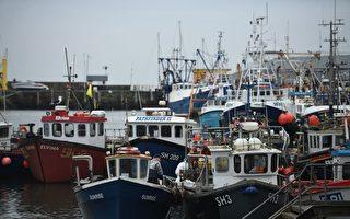 都怪你们要脱欧 法国海关涉嫌刁难英国渔民