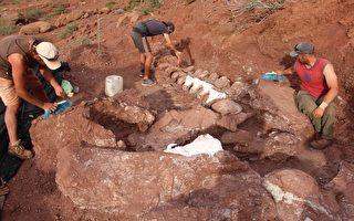 或为史上最大陆生动物 泰坦巨龙化石现阿根廷