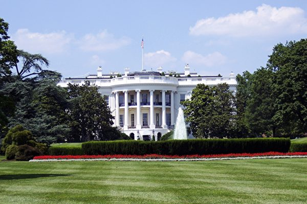 庚子年当选美国总统都在任内去世 网民热议