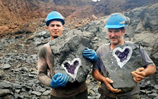 巧夺天工 切开岩石 现天然心形紫水晶