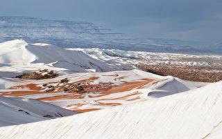 -3℃白雪笼罩 非洲撒哈拉沙漠变童话世界