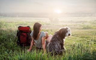 想帶狗狗去健行 快樂旅程10項攻略