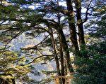 台灣古典詩:縱賞合歡溪