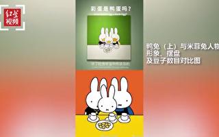 广州教授抄袭米菲一度辩解 今同意永久停用