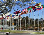 加國參議員:中共對法輪功學員犯下群體滅絕罪