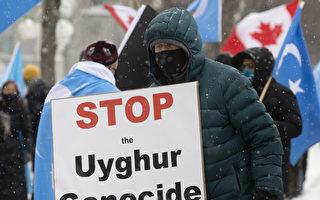 確認中共群體滅絕 加拿大國會通過動議