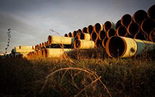拜登叫停美加石油管道的后续影响