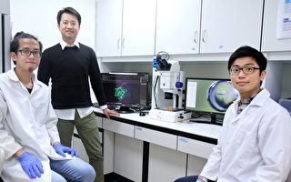 解析蛋白質結構 陽明交大:解決癌細胞抗藥性