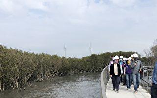彰县芳苑湿地红树林海空步道 六月底可望开放