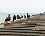 首屆全國友善釣魚比賽 落實海洋國家名號