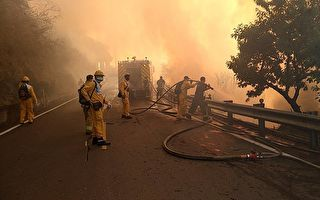 阿里山公路边坡大火延烧 路段封闭
