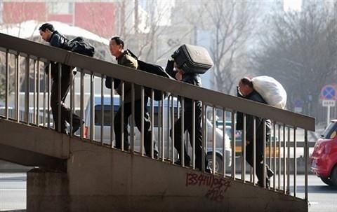 张菁:上山下乡运动——轰出城市