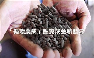 循环农业新蓝海 鸡粪造粒点粪成金