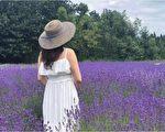 新詩:紫色的夢