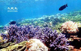 离岛旅游伪出国  今年你想去哪儿?