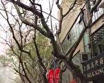 上海沙尘北京阴霾外加日晕 11省区再现沙尘