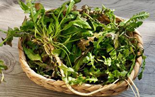 薺菜是「野菜之王」 養肝、退燒還能止血