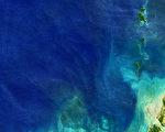 驚訝!人類免疫系統對這些深海細菌視而不見