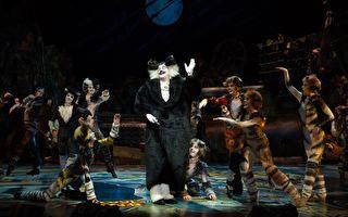 百老匯音樂劇《貓》開先例 7月唱進台灣東部