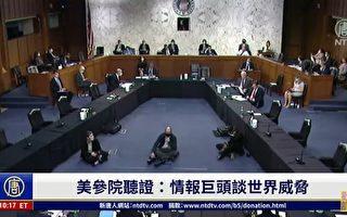 【直播】美参院听证:情报巨头谈世界威胁