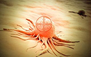人人体内都有癌细胞,但不一定会形成癌症。(Shutterstock)