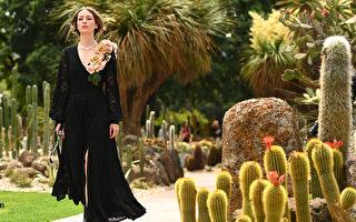 黑洋裝搭低跟鞋 輕鬆穿出法式優雅品味