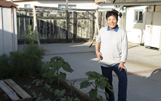 從農林專科到庭院設計施工  董文輝服務社區