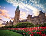 加拿大举办视频晚会 庆祝世界法轮大法日