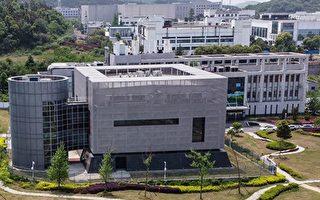 报告:武汉实验室疫情前数月曾招标翻修设施