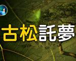 【未解之谜】中国古人与植物的奇特感应