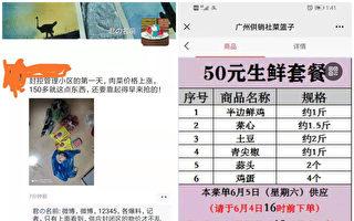 【一線採訪】廣州疫情衝擊全國最大花卉市場