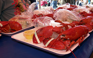 美疫情趋缓后食客强势回归 龙虾价格上涨