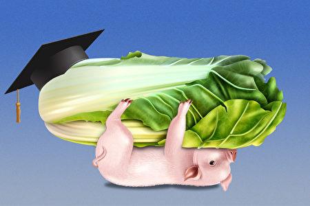 【财商天下】土猪拱白菜 励志还是可怕?