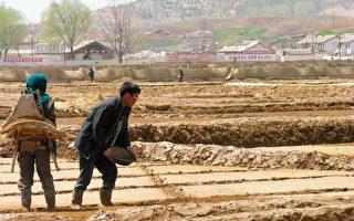 朝鲜粮食短缺严重 金正恩喊话 美特使回应