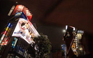 日本東京高樓上驚現「巨貓」 吸引路人眺望