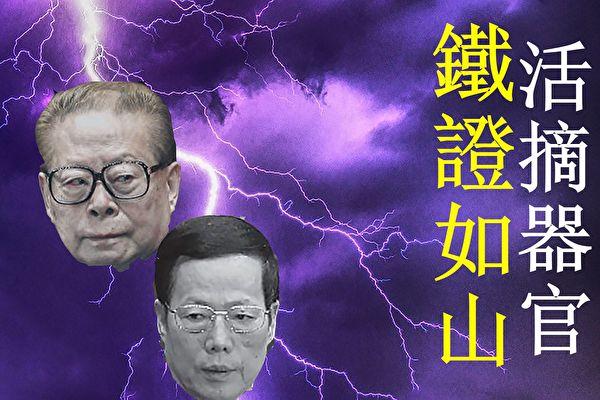 【内幕】张高丽为何承认江泽民是活摘元凶