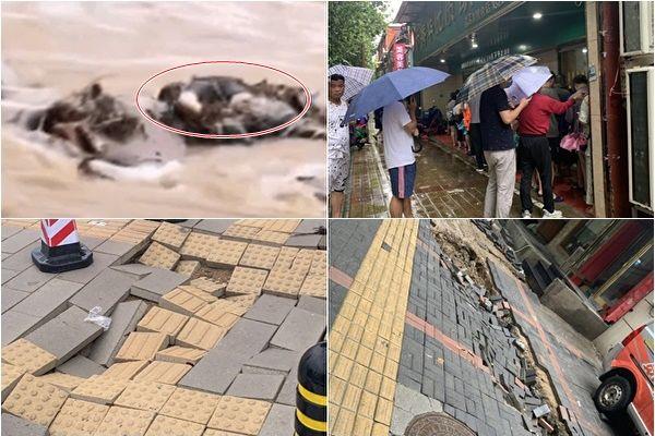 【一線採訪】 鄭州路面數百處塌陷 民心恐慌