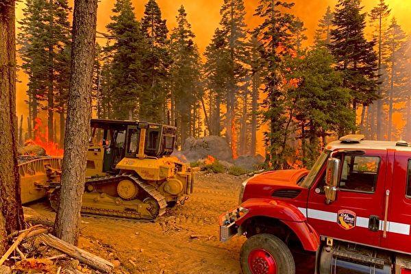 迪克西山火擴散逾10萬英畝 5支突擊隊全力滅火