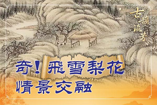【古韵流芳】岑参边塞诗 飞雪似梨花