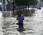 河南洪災致千萬畝農作物受災 玉米價格或上漲