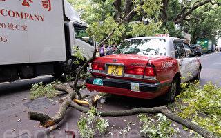 组图:香港尖沙咀海防道塌树 两辆车受损
