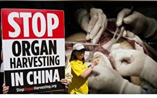【直播】CPDC:制止中共活摘器官及种族灭绝