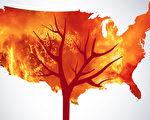 山火越烧越频繁 你家在野火高风险区吗?