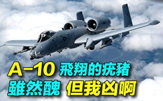 【探索时分】美军A-10攻击机:虽然丑但很凶