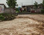 張菁:河南洪災絕收農田的50元補助金