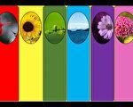 【馨香雅句】你喜欢的颜色吸引哪种能量